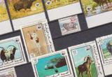 Животные Азии и Африки,. фауна N24